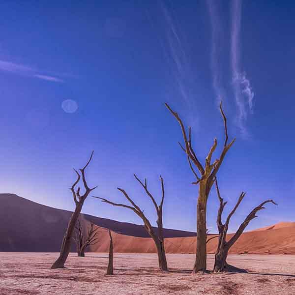 prachtige woestijn in afrika