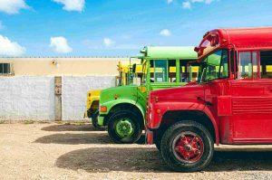 Gekleurde bussen tijdens een buitenlandse stage in Aruba